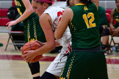 Gallery CIAC Girls Basketball; Wolcott vs. Holy Cross - Photo # 718