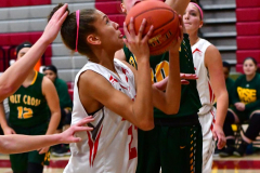Gallery CIAC Girls Basketball; Wolcott vs. Holy Cross - Photo # 724