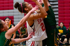 Gallery CIAC Girls Basketball; Wolcott vs. Holy Cross - Photo # 725
