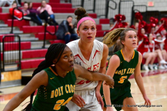 Gallery CIAC Girls Basketball; Wolcott vs. Holy Cross - Photo # 730