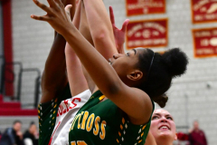 Gallery CIAC Girls Basketball; Wolcott vs. Holy Cross - Photo # 732