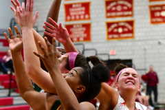 Gallery CIAC Girls Basketball; Wolcott vs. Holy Cross - Photo # 734