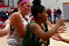 Gallery CIAC Girls Basketball; Wolcott vs. Holy Cross - Photo # 735