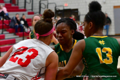 Gallery CIAC Girls Basketball; Wolcott vs. Holy Cross - Photo # 738