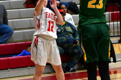 Gallery CIAC Girls Basketball; Wolcott vs. Holy Cross - Photo # 742
