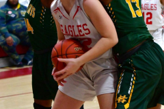 Gallery CIAC Girls Basketball; Wolcott vs. Holy Cross - Photo # 744