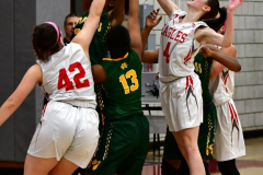 Gallery CIAC Girls Basketball; Wolcott vs. Holy Cross - Photo # 746