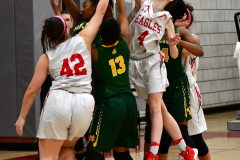 Gallery CIAC Girls Basketball; Wolcott vs. Holy Cross - Photo # 747