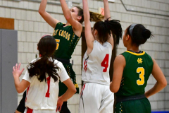 Gallery CIAC Girls Basketball; Wolcott vs. Holy Cross - Photo # 793