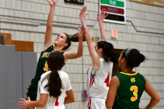 Gallery CIAC Girls Basketball; Wolcott vs. Holy Cross - Photo # 794
