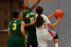 Gallery CIAC Girls Basketball; Wolcott vs. Holy Cross - Photo # 795