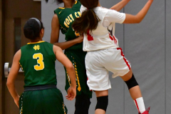 Gallery CIAC Girls Basketball; Wolcott vs. Holy Cross - Photo # 796