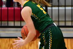 Gallery CIAC Girls Basketball; Wolcott vs. Holy Cross - Photo # 815