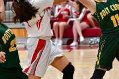 Gallery CIAC Girls Basketball; Wolcott vs. Holy Cross - Photo # 817