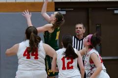 Gallery CIAC Girls Basketball; Wolcott vs. Holy Cross - Photo # 845