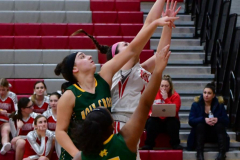 Gallery CIAC Girls Basketball; Wolcott vs. Holy Cross - Photo # 860