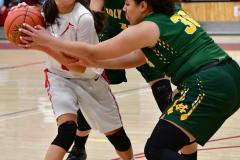 Gallery CIAC Girls Basketball; Wolcott vs. Holy Cross - Photo # 879