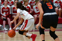 CIAC Girls Basketball; Wolcott vs. Watertown - Photo # 157