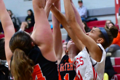 CIAC Girls Basketball; Wolcott vs. Watertown - Photo # 167