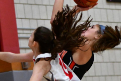 CIAC Girls Basketball; Wolcott vs. Watertown - Photo # 216