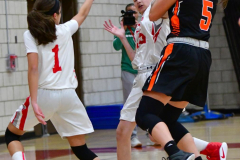 CIAC Girls Basketball; Wolcott vs. Watertown - Photo # 251