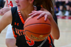 CIAC Girls Basketball; Wolcott vs. Watertown - Photo # 262
