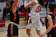 CIAC Girls Basketball; Wolcott vs. Watertown - Photo # 338