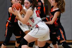 CIAC Girls Basketball; Wolcott vs. Watertown - Photo # 396
