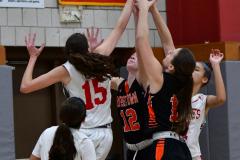 CIAC Girls Basketball; Wolcott vs. Watertown - Photo # 411