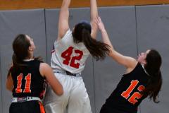 CIAC Girls Basketball; Wolcott vs. Watertown - Photo # 476