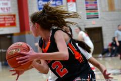 CIAC Girls Basketball; Wolcott vs. Watertown - Photo # 541