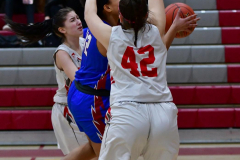 CIAC Girls Basketball; Wolcott vs. St. Paul - Photo # 245