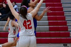 CIAC Girls Basketball; Wolcott vs. St. Paul - Photo # 247