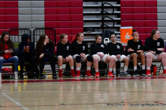 CIAC Girls Basketball; Wolcott vs. St. Paul - Photo # 251
