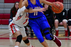 CIAC Girls Basketball; Wolcott vs. St. Paul - Photo # 252