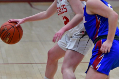 CIAC Girls Basketball; Wolcott vs. St. Paul - Photo # 290
