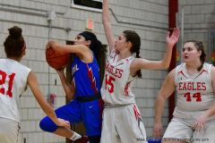 CIAC Girls Basketball; Wolcott vs. St. Paul - Photo # 318