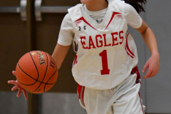 CIAC Girls Basketball; Wolcott vs. St. Paul - Photo # 357