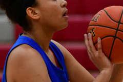 CIAC Girls Basketball; Wolcott vs. St. Paul - Photo # 377