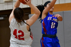 CIAC Girls Basketball; Wolcott vs. St. Paul - Photo # 403