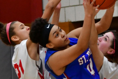 CIAC Girls Basketball; Wolcott vs. St. Paul - Photo # 405