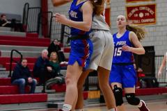 CIAC Girls Basketball; Wolcott vs. St. Paul - Photo # 066