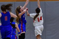 CIAC Girls Basketball; Wolcott vs. St. Paul - Photo # 121