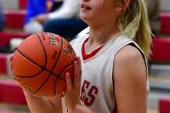 Gallery CIAC Girls Basketball; Wolcott vs. Holy Cross - Photo # 009