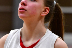 Gallery CIAC Girls Basketball; Wolcott vs. Holy Cross - Photo # 011