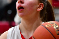 Gallery CIAC Girls Basketball; Wolcott vs. Holy Cross - Photo # 014