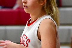 Gallery CIAC Girls Basketball; Wolcott vs. Holy Cross - Photo # 025
