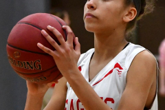 Gallery CIAC Girls Basketball; Wolcott vs. Holy Cross - Photo # 030