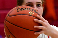 Gallery CIAC Girls Basketball; Wolcott vs. Holy Cross - Photo # 035