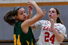 Gallery CIAC Girls Basketball; Wolcott vs. Holy Cross - Photo # 100